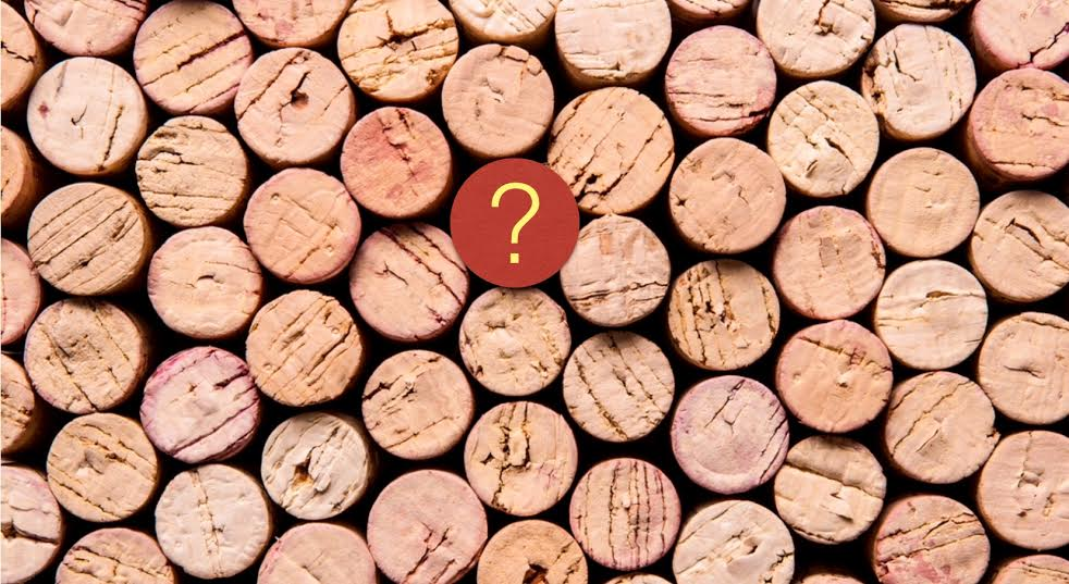 Marketing del Vino: Consigli per Sviluppare un Business di Successo