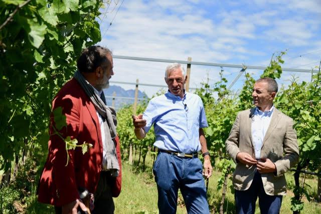 Signori del Vino in Trentino Alto Adige | News Vino Online