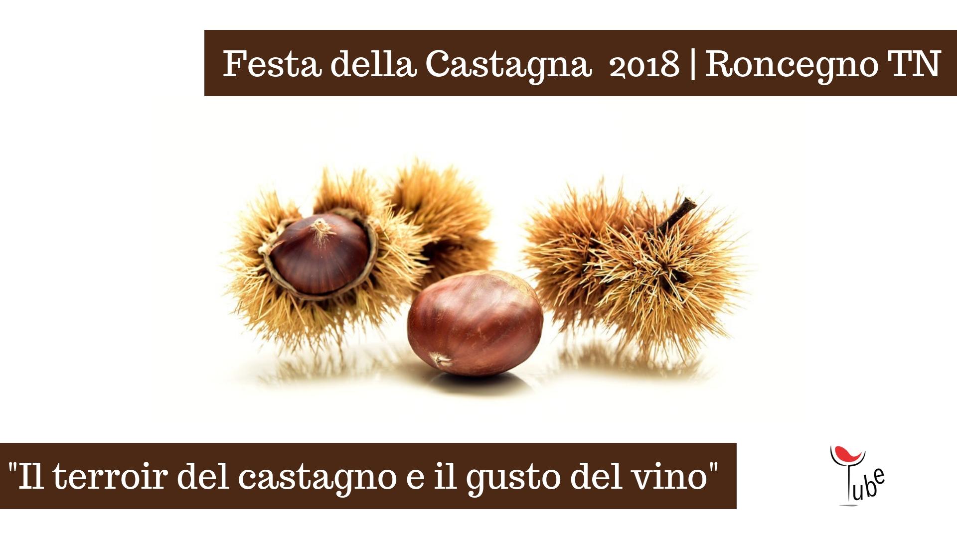 Abbinamento Cibo Vino alla Festa della Castagna | Eventi Vino Trentino