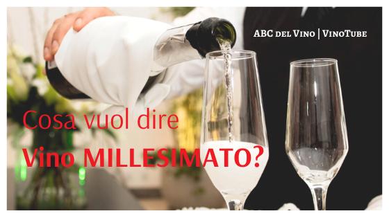 Cosa vuol dire vino MILLESIMATO? | ABC Vino Online