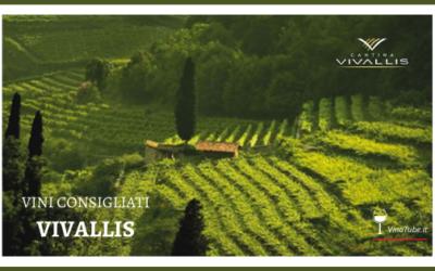 VIVALLIS | Vini consigliati da VinoTube